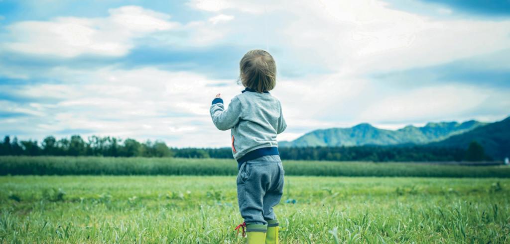 Окружающая среда, здоровье и безопасность
